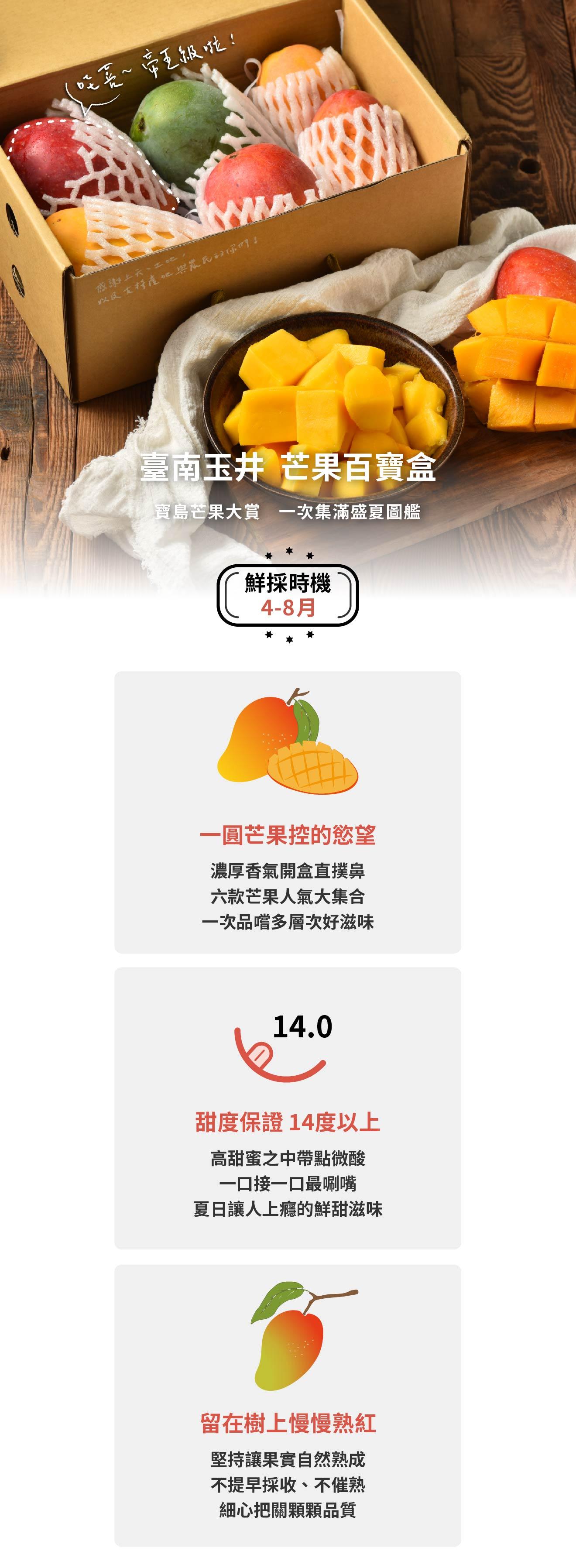 臺南玉井芒果珠寶盒